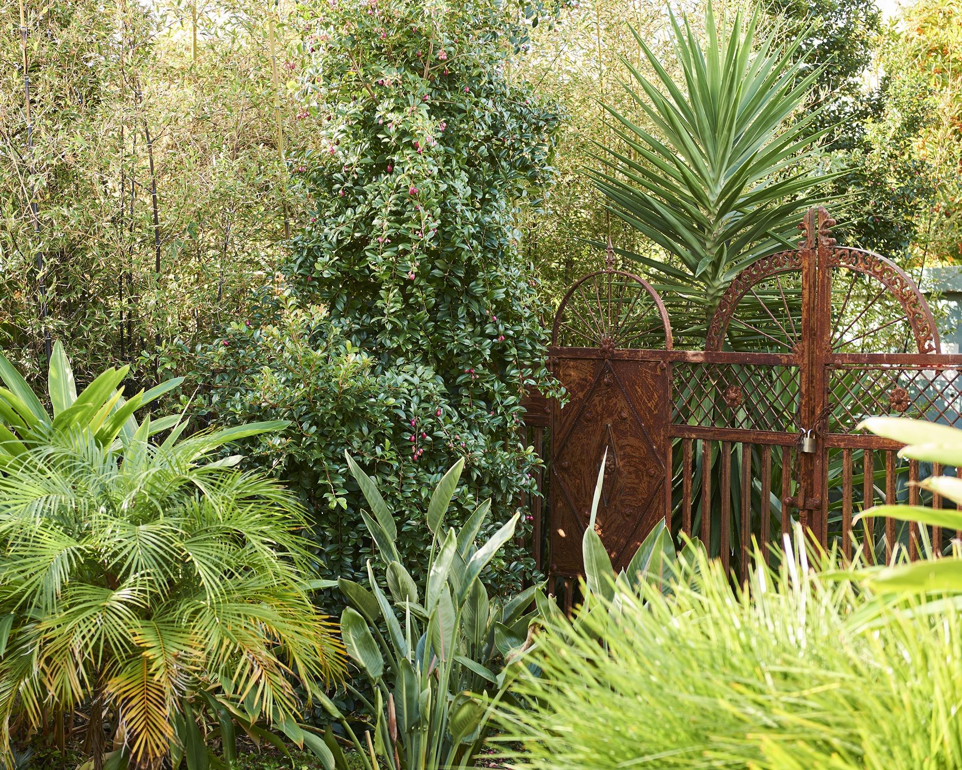 Kyo Garden
